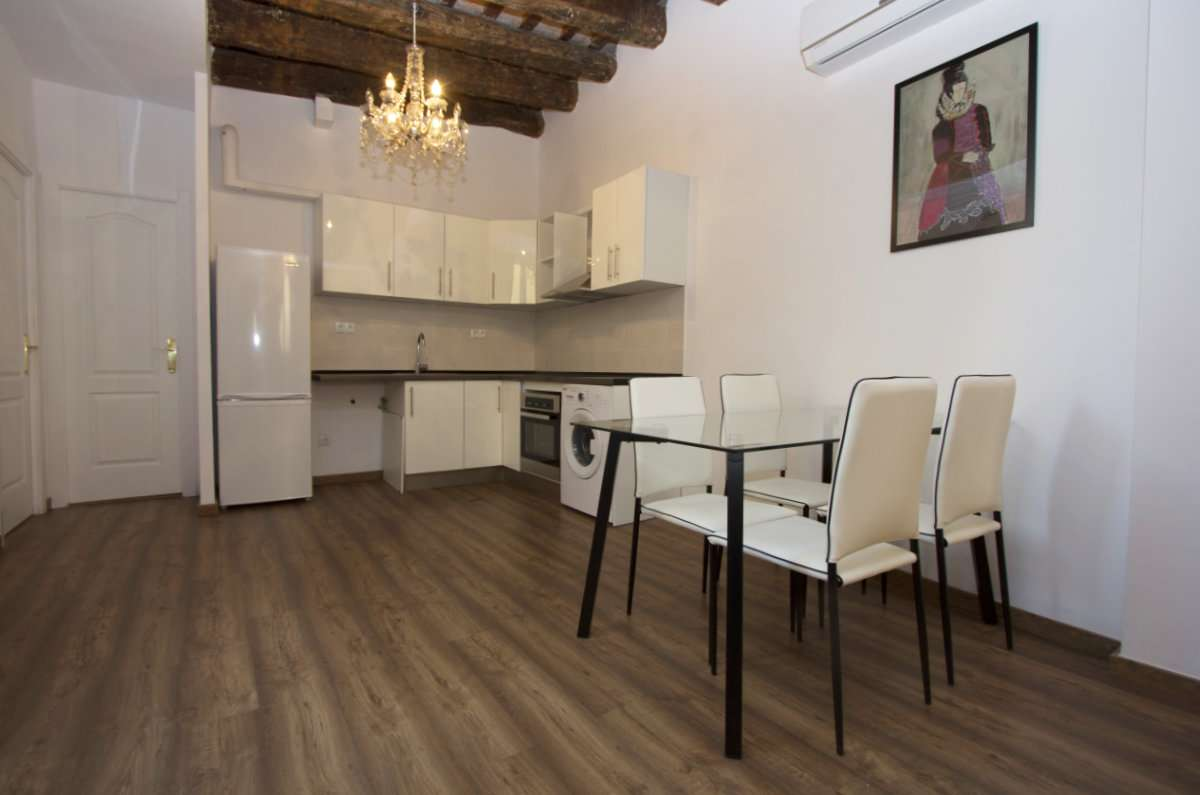Renovated flat in Gotic Quarter