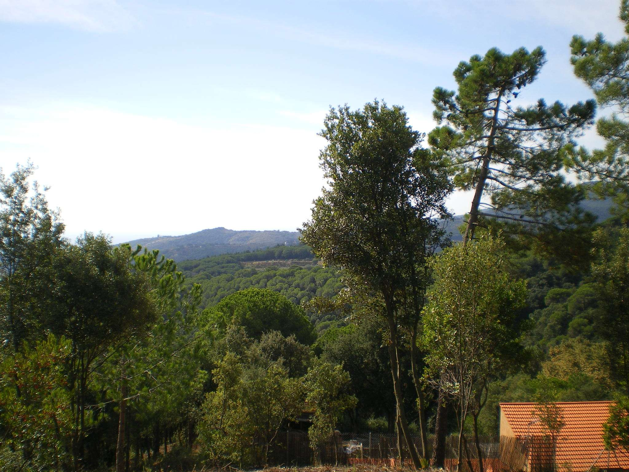 Land for sale in Collsacreu - Arenys de Munt
